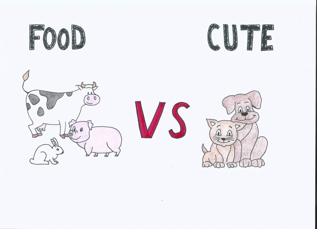food vs cute