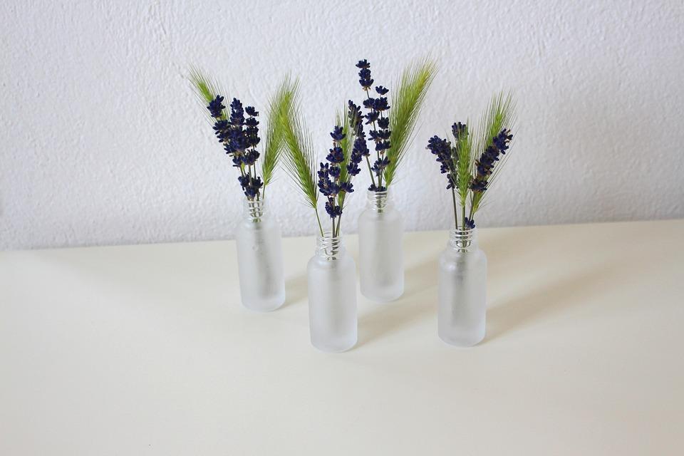 lavender-3397286_960_720
